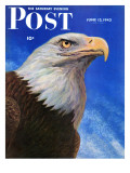 """Closeup of Bald Eagle "" Saturday Evening Post Cover  June 13  1942"