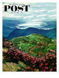 """Appalachian Rhododendrons "" Saturday Evening Post Cover  May 27  1961"