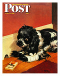 """Butch and Mousetrap "" Saturday Evening Post Cover  June 8  1946"