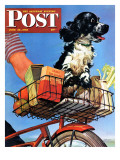 """Butch's Bike Ride "" Saturday Evening Post Cover  June 23  1945"