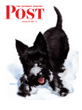 """Scotty in Snow "" Saturday Evening Post Cover  January 30  1943"