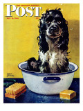 &quot;Butch Gets a Bath &quot; Saturday Evening Post Cover  May 11  1946