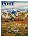 """Sheep Ranch "" Saturday Evening Post Cover  March 18  1961"