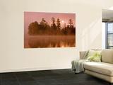 Sunrise on a Lake  Adirondack Park  New York  USA
