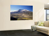 Mount St Helens National Volcano Monument  Washington  USA