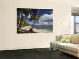 Playa El Frances Beach  El Frances  Samana Peninsula  Dominican Republic