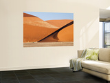 Abstract of Sand Dunes  Sossusvlei  Namibia  Africa