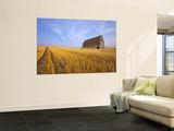 Woman Photographing Barn Near Pullman  Washington  USA