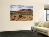 Mile 24 Boulder with Ancestral Puebloan Petroglyphs  Deadhorse Canyon
