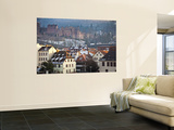 Heidelberg Castle and Houses