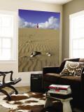 Woman Walking on Sand Dune in Maspalomas Dunes (Dunas De Maspalomas)