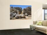 Ruins in Ggantija