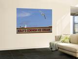 Ice-Cream Van and Seagulls