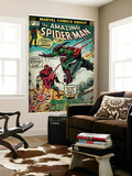 Marvel Comics Retro: The Amazing Spider-Man Comic Book Cover No122  the Green Goblin (aged)