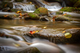 Roaring Fork Stream Great Smoky Mountains