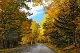 Autumn Scenic Drive  Acadia  Maine