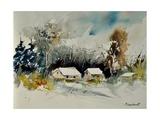 Watercolor 111025