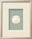 *Exclusive* Sanddollar Shadowbox - Seafoam