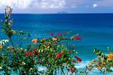 Desecheo Island View  Rincon  Puerto Rico