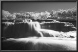 Bull Creek IR