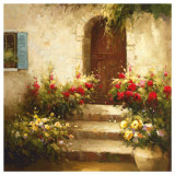Rustic Doorway I