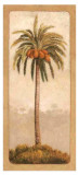 Palmtree II