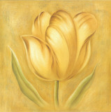 Great Tulip II