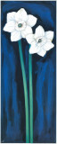 Narcissus In Blue I
