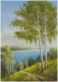 Birches At The Lake II