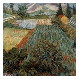 Champs Aux Coquelicots Reproduction d'art par Vincent Van Gogh