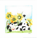 Little Cow And Sunflowers