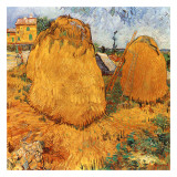 Meules De Foin En Provence