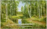 Birch Grove Near Pokrovskoje
