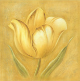 Great Tulip I
