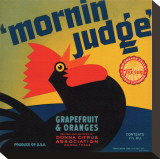 Mornin Judge Grapefruit and Oranges