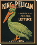 King Pelican Brand California Iceberg Lettuce