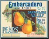 Embarcadero Brand Fancy Pears  Santa Clara Valley  US No 1