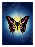 Butterfly in Blue Shadow