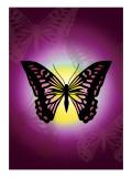Butterfly in Purple Shadow
