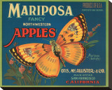 Mariposa Fancy Northwestern Apples