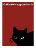Black Cat in Red