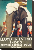 Lloyd Triestino  Indes
