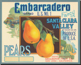 Embarcadero Brand Fancy Pears  Santa Clara Valley  US No 1