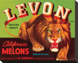 Levon Brand California Melons