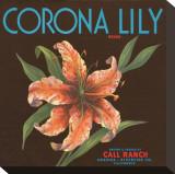 Corona Lily Brand Citrus  California