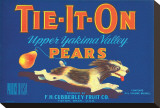 Tie-It-On Upper Yakima Valley Pears