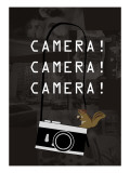 Camera Brown