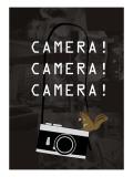 Camera Brown