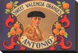 Antonio Sweet Valencia Oranges