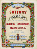 Suttons Autumn Catalogue